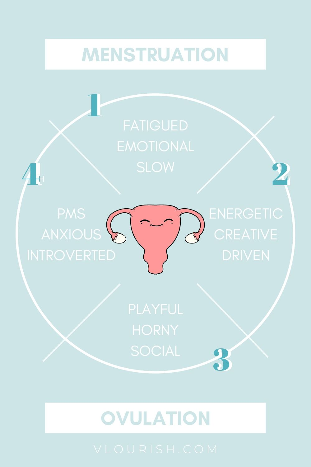 4 phases of the menstrual cycle